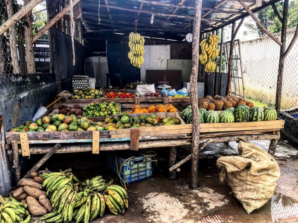 DOMINIKANA: JAK SMAKUJĄ KARAIBY?