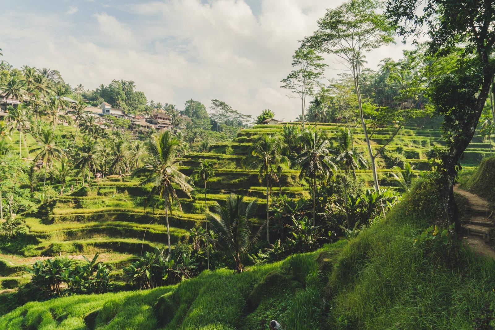 Bali więcej niż się spodziewasz