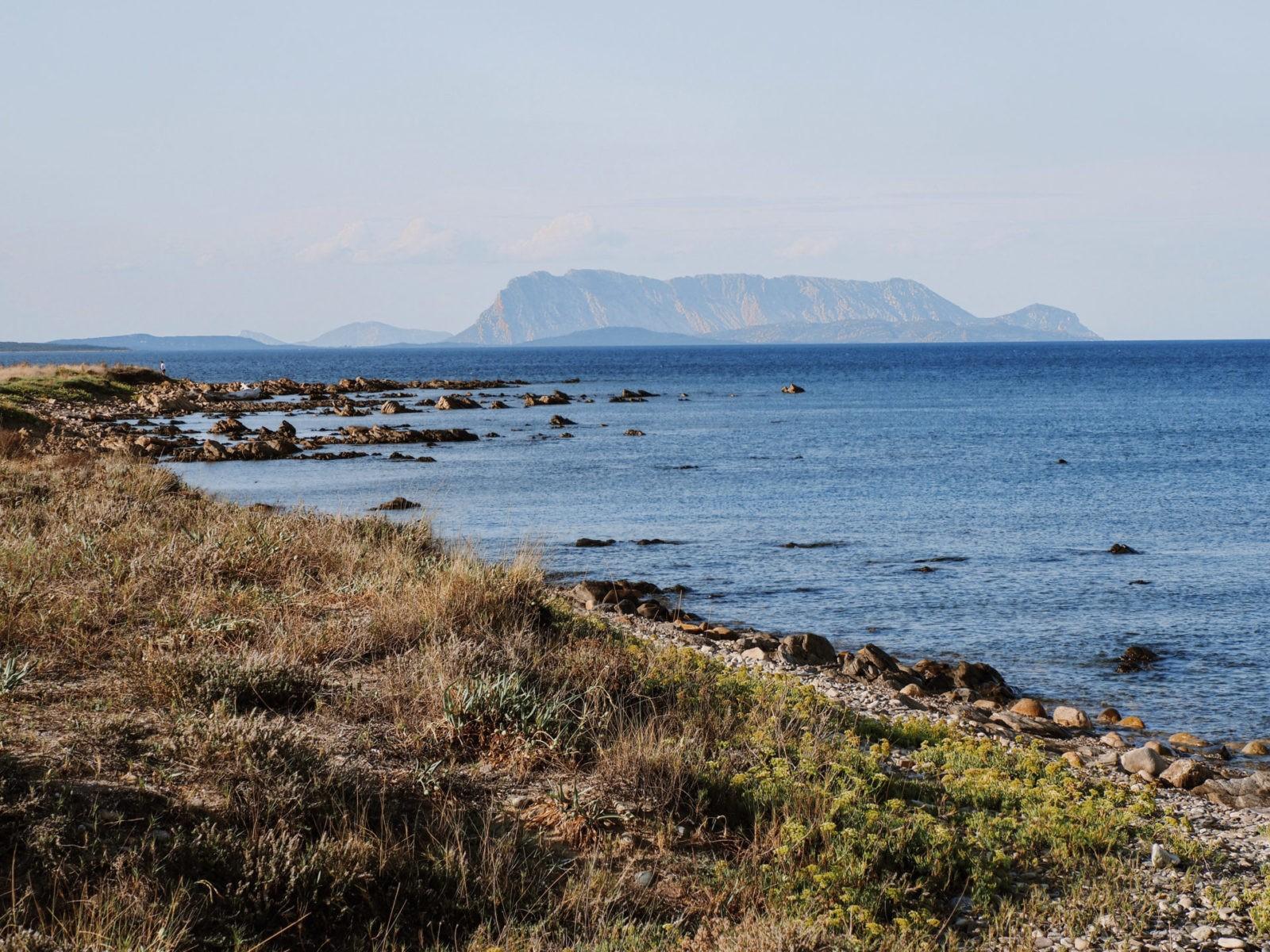 Zatoka kilka kroków od hotelu Sa Prata